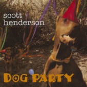 Scott Henderson - Fence Climbin' Blues