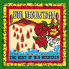 Big Mountain - I Would Find a Way artwork