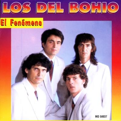 El Fenómeno - Los Del Bohio