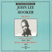 John Lee Hooker - Going Mad Blues
