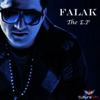 Falak - Tera Saath Ho  artwork