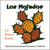 La Negra Karin & Mariachi Hermanos Calderon - El Son de la Negra ilustración