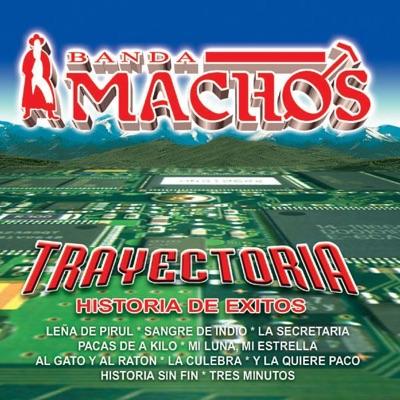 Trayectoria: Banda Machos - Banda Machos