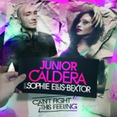 Can't Fight This Feeling (Radio Remixes) [feat. Sophie Ellis-Bextor] - EP