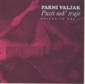 Parni Valjak - gledam je dok spava