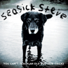 You Can't Teach an Old Dog New Tricks - Seasick Steve
