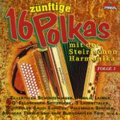16 zünftige Polkas mit der Steirischen Harmonika, Folge 3