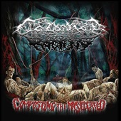 Colonize the Rotting - Regurgitated Carrion