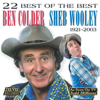 22 Best of the Best (Re-Recorded Versions) - Sheb Wooley