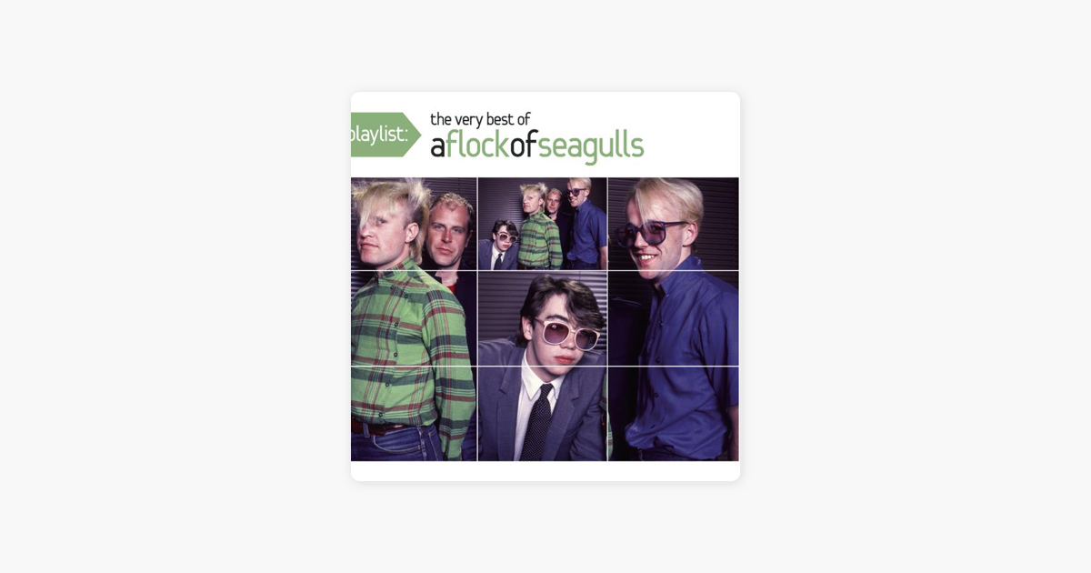 Playlist The Very Best Of A Flock Of Seagulls By A Flock Of