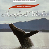 The David Sun Natural Sound Collection: Sounds of the Earth - Humpback Whales