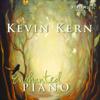 Enchanted Piano - Kevin Kern