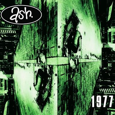 1977 (Collectors Edition) - Ash
