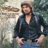Waylon Jennings - Them Old Love Songs
