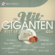Verschiedene Interpreten - Best of 60's - Die Hit Giganten