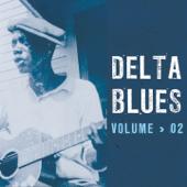 Delta Blues-Various Artists