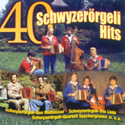 40 Schwyzerörgeli Hits - Various Artists - Various Artists