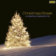 Christmas Break: A Relaxing Classical Mix - Various Artists - Various Artists