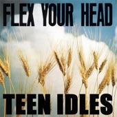 Teen Idles - No Fun