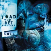Toad the Wet Sprocket - Throw It All Away