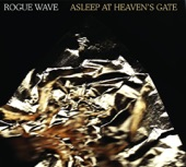 Rogue Wave - Chicago x 12