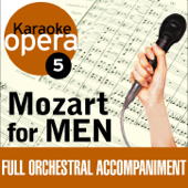 Karaoke Opera, Vol. 5: Mozart for Men
