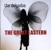 The Delgados - The Past That Suits You Best