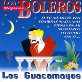 Los Guacamayos - Si Tu Me Dices Ven