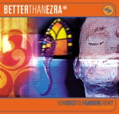 Better Than Ezra - Beautiful Mistake