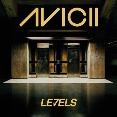 Levels - Avicii song