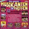 Das große Musikantentreffen, Vol. 15