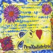 Ron Kadish Trio - Alliteration