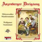Anzenberger Dreigsang, Mittenwalder Maultrommler & Wallgauer Soatnmusi