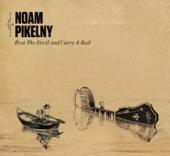 Noam Pikelny - My Mother Thinks I'm a Lawyer