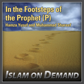 In the Footsteps of the Prophet (P): Peace In Troubled Times (3 Lectures)