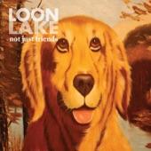 Loon Lake - Easy Chairs