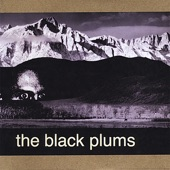 The Black Plums - Sidewalk Serenade