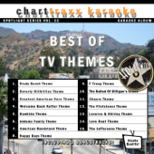 Spotlight Karaoke Vol. 22 (Best of TV Themes)
