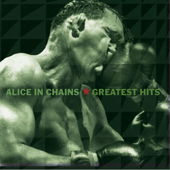 Greatest Hits-Alice In Chains