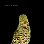 Andrew Bird - Simple X