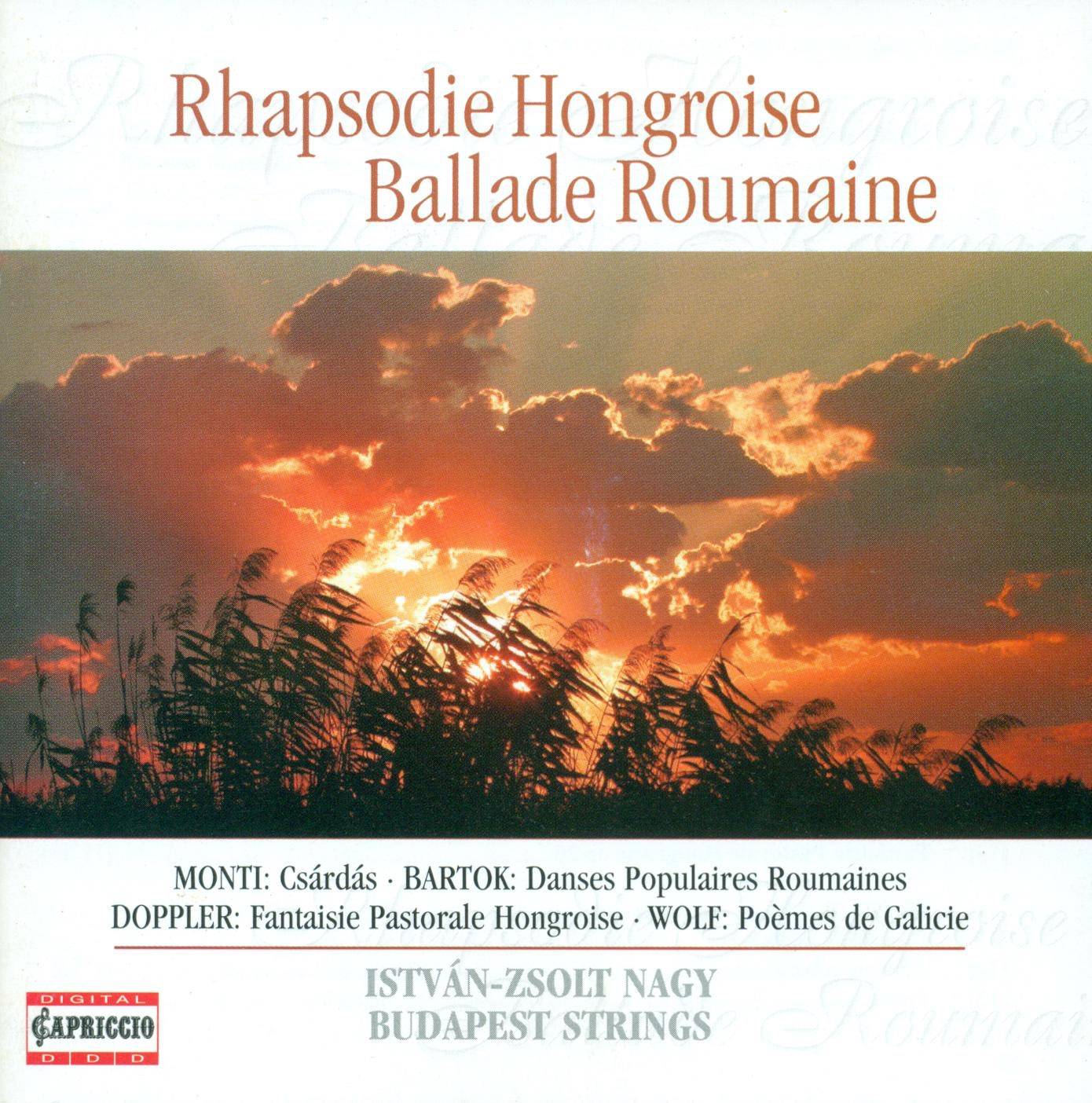 Flute and String Orchestra Arrangements - Brahms, J. - Porumbescu, C. - Enescu, G. - Doppler, F. - Bartok , B.
