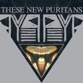 These New Puritans - Doppelganger