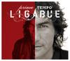 Ligabue - Niente Paura artwork