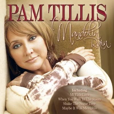 Mandolin Rain - Pam Tillis