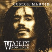 Junior Marvin - Redemption Song