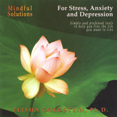 Mindful Solutions for Stress, Anxiety, and Depression