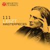 Various Artists - 111 Liszt Masterpieces  artwork