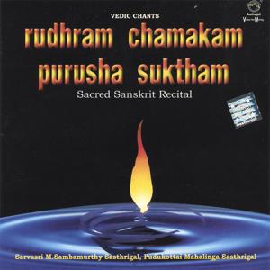 Prof. Thiagarajan & Sanskrit Scholars - Rudhram Chamakam Purusha Suktham