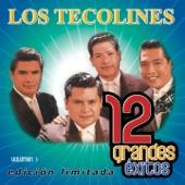 Los Tecolines - Cosas Del Amor