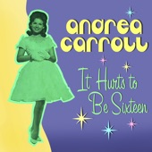 Andrea Carroll - Why Am I So Shy?